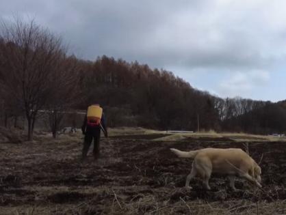肥料を撒く動画を作りました