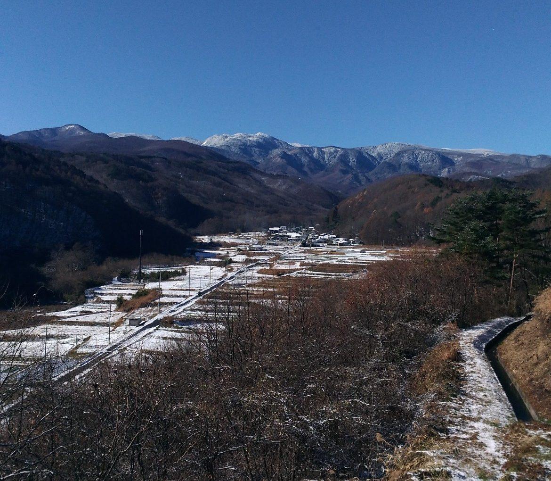 今シーズンはじめての雪